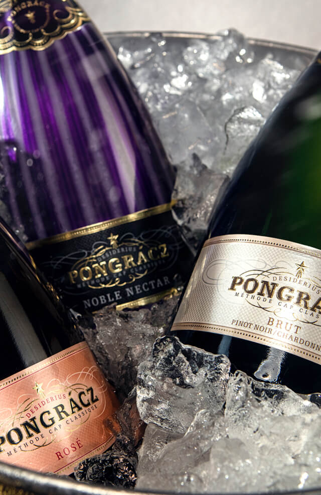 Pongracz MCC on ice ready to be served chilled